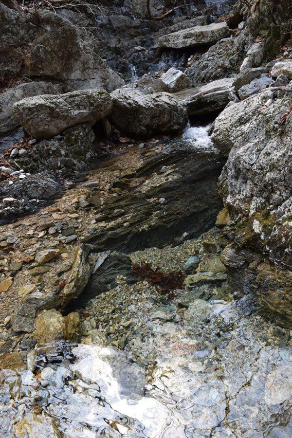 透明度抜群の小川で休憩タイム